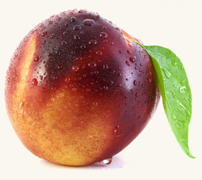 бритый персик фото